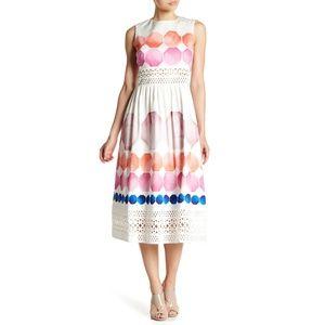 Ted Baker | Serinah Lace Paneled Midi Dress